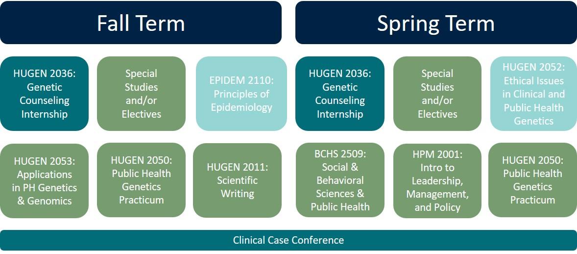 Dual Mphms In Genetic Counseling Human Genetics Pitt Public