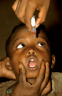 Boy receiving oral polio vaccine, Ethiopia