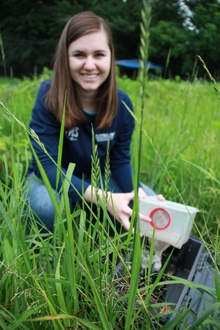Student in field, trapping mosquitos