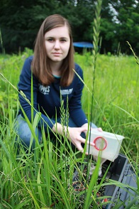Student mosquito trapping for ACHD Practicum project Summer 2015
